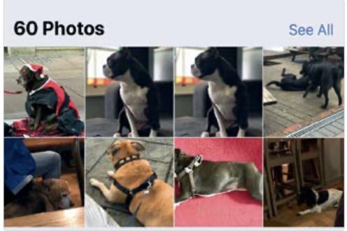 MacOS: Organizzare e trovare le foto_1